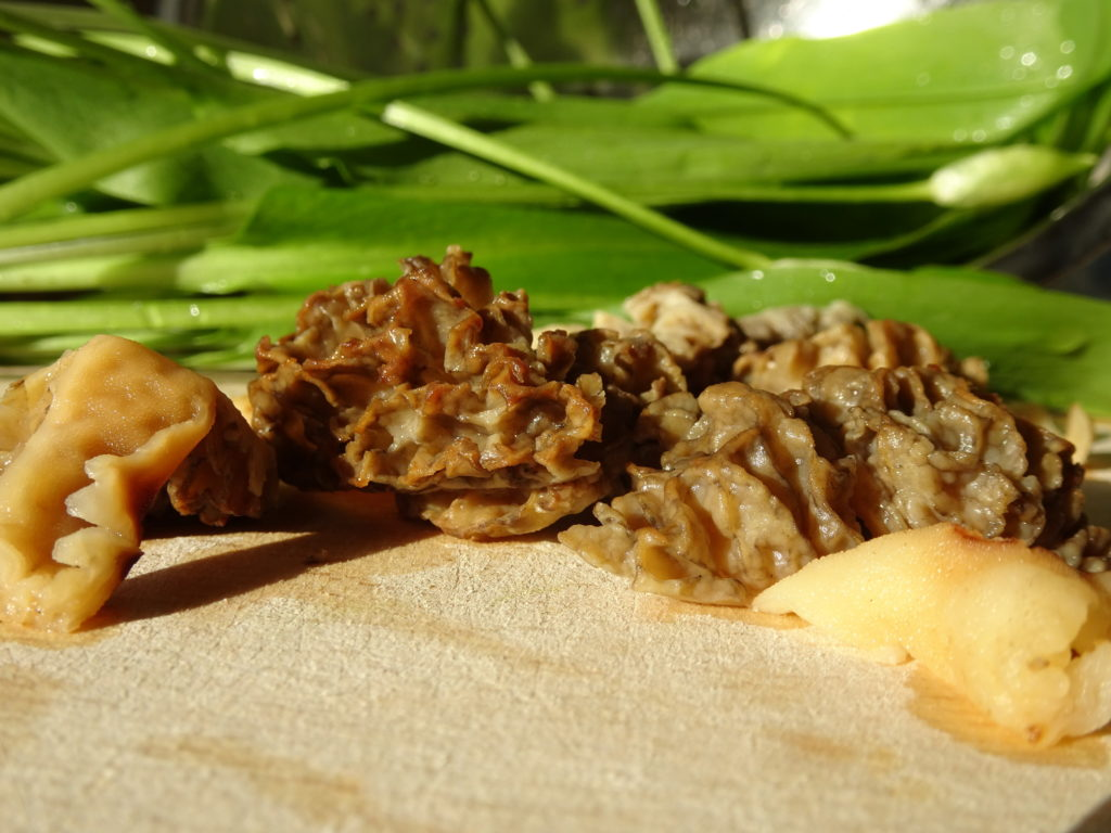 close up of chopped morels with wild garlic in background