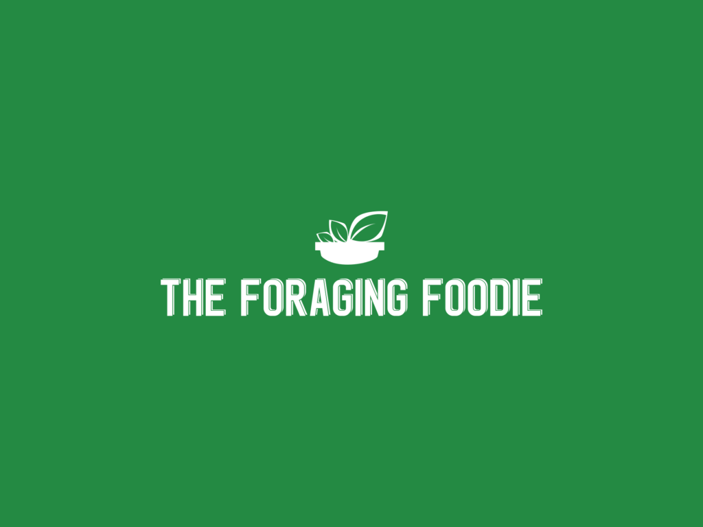 The Foraging Foodie logo