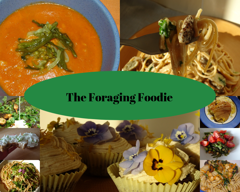 The Foraging Foodie