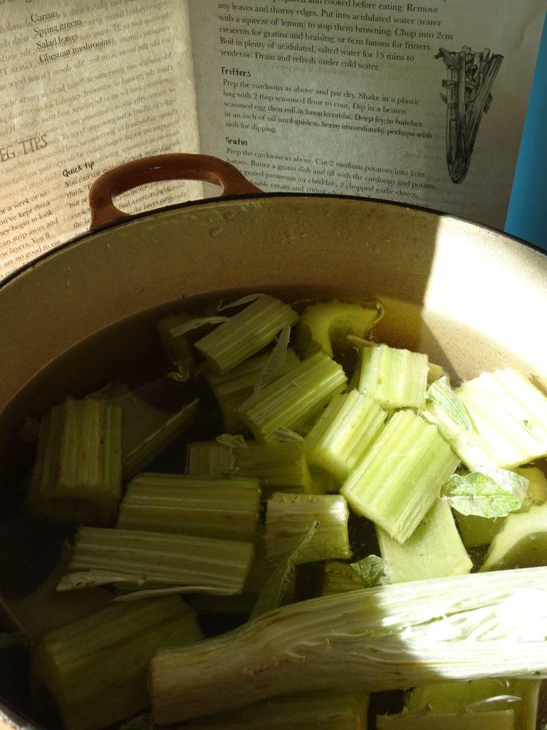 Prepared Cardoon Vegetable