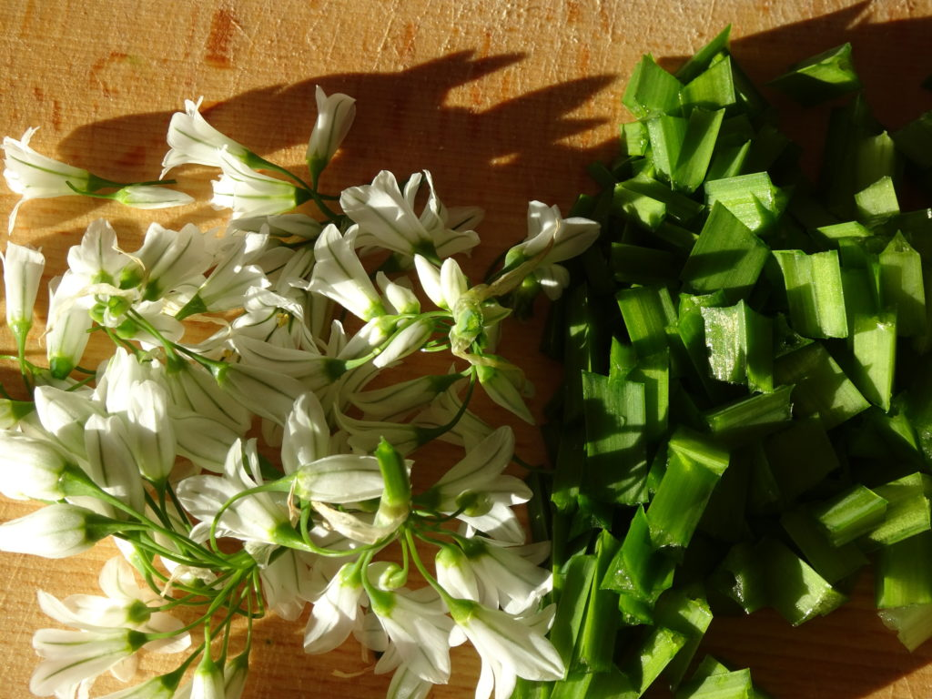 Chopped Leaves and Flowers of the three cornered leek