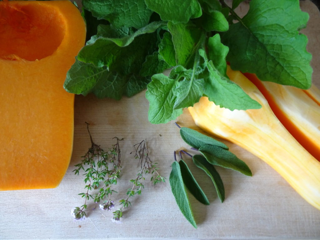 Baked Butternut And Nibblicious Nipplewort
