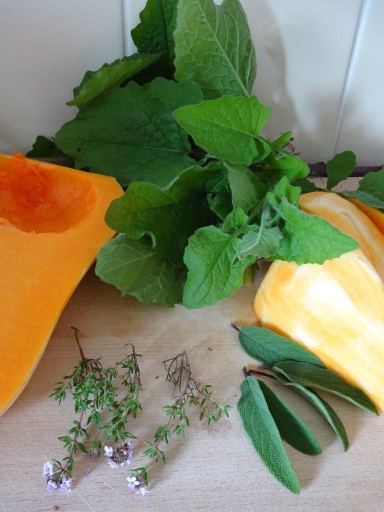 Nipplewort and butternut