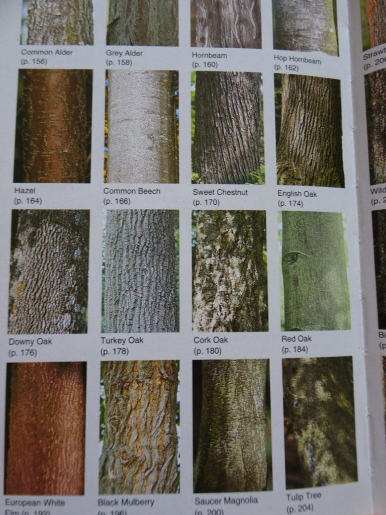 Trees of Britain and Europe book