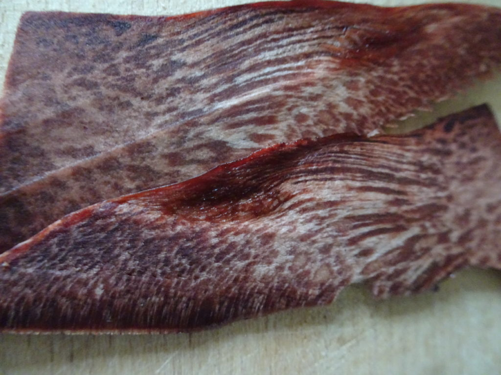 Fistulina hepatica sliced