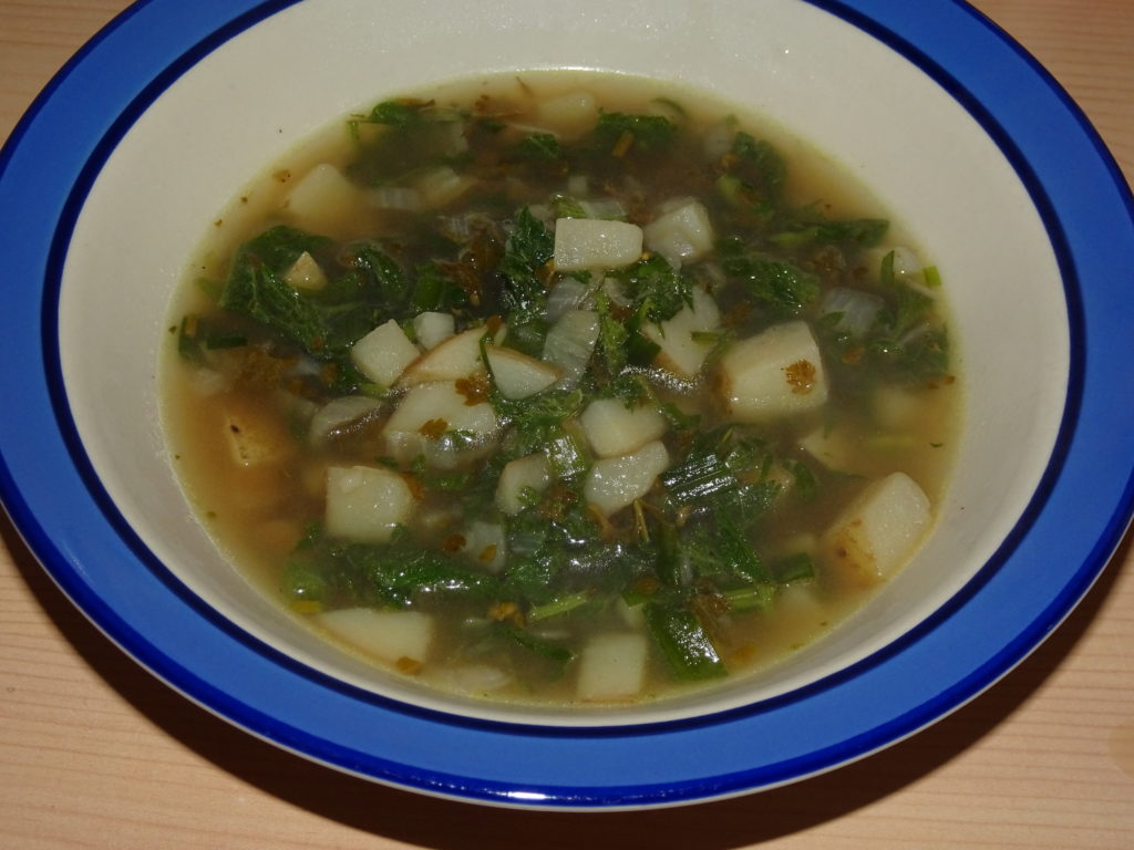 Wild Garden Soup